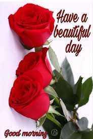☺️☺️शुभ प्रभात👌👌💕💕 - Have a beautiful day Good morning B - ShareChat