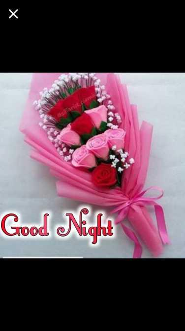 🏙️🏙️🏙️good night - Good Night - ShareChat