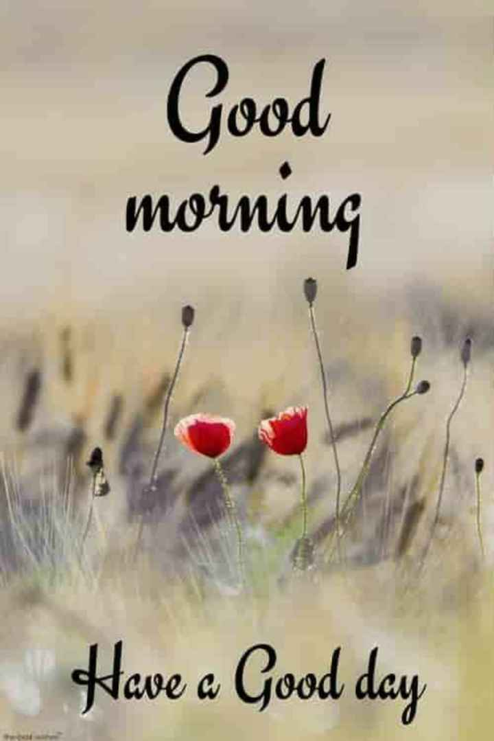 🕉️🙏🙏🕉️ - Good morning Have a Good day - ShareChat
