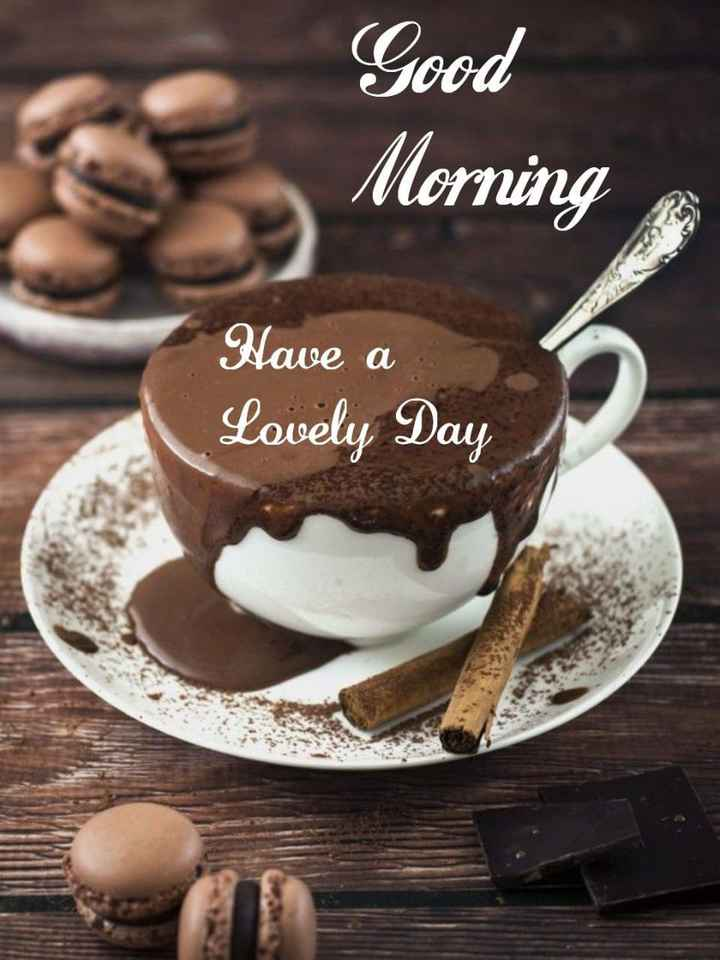 ☀️good morning☀️ - Good Morning Have a Lovely Day - ShareChat