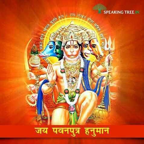 🌹🏵️ jay hanumandada🌹🏵️ - SPEAKING TREE IN परामलख बत साता सहित पगल मूरति के एकर हरनमा सहित हदया हदय बसह जय पवनपुत्र हनुमान - ShareChat