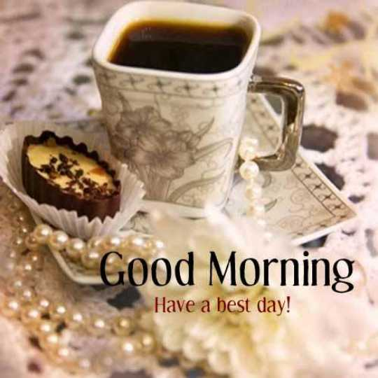 ♥️my friend♥️ - Good Morning Have a best day ! - ShareChat