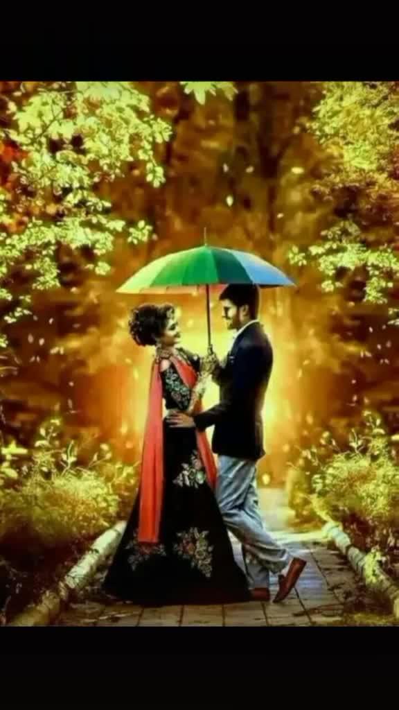 🎶রোমান্টিক গান - @ sonai71 love you sona @ sonai71 - ShareChat
