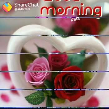 🕉శనివారం స్పెషల్ విషెస్ - ShareChat