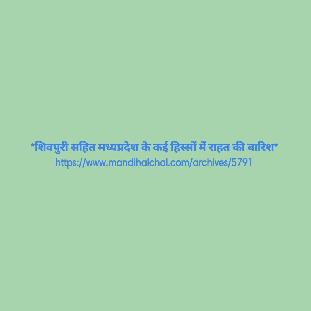 12 जून की न्यूज़ - * शिवपुरी सहित मध्यप्रदेश के कई हिस्सों में राहत की बारिश https : / / www . mandihalchal . com / archives / 5791 - ShareChat
