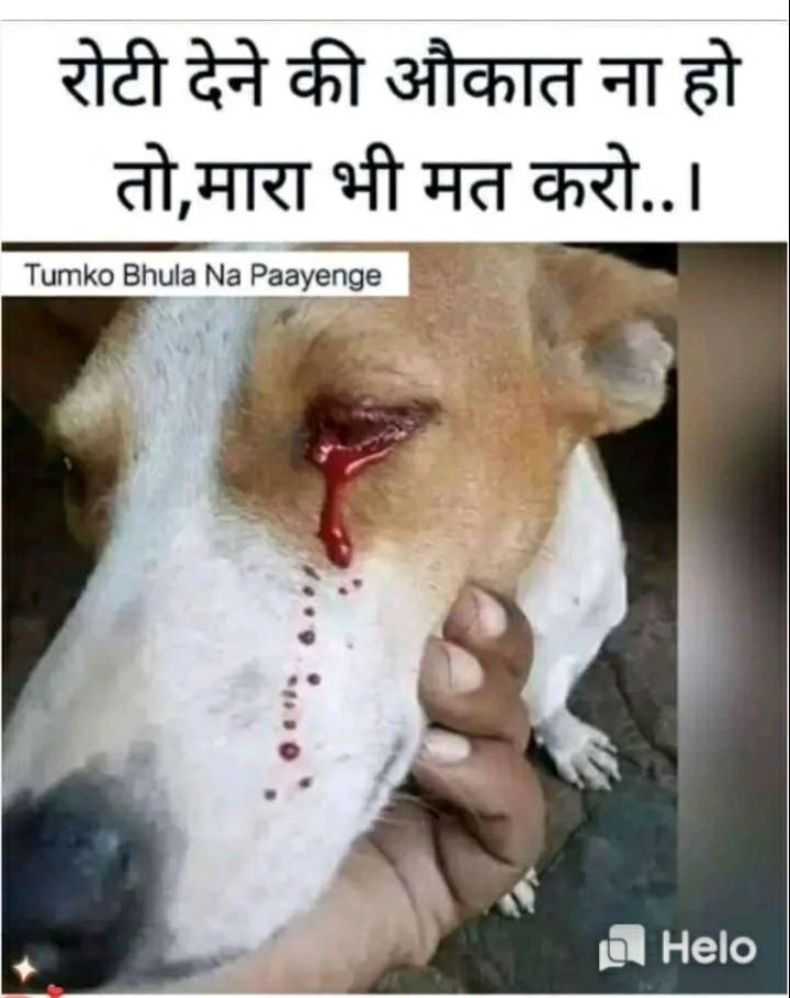 🤣 मज़ेदार फ़ोटो - | रोटी देने की औकात ना हो । तो , मारा भी मत करो . . । Tumko Bhula Na Paayenge . . . . . g - ShareChat
