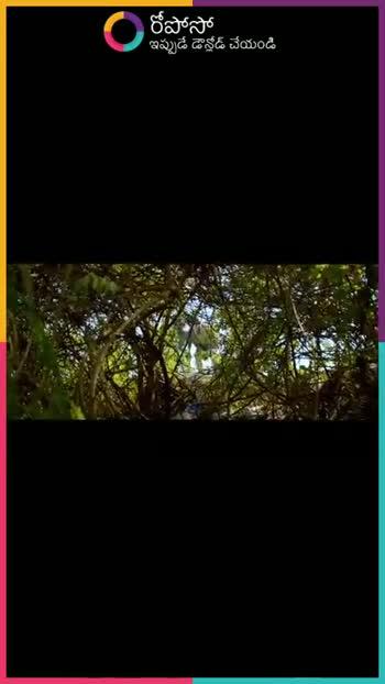 👌multan by manat noor - రీపోసో ఇప్పుడే డౌన్లోడ్ చేయండి ROPOSO India ' s no . 1 video app Download now : - ShareChat