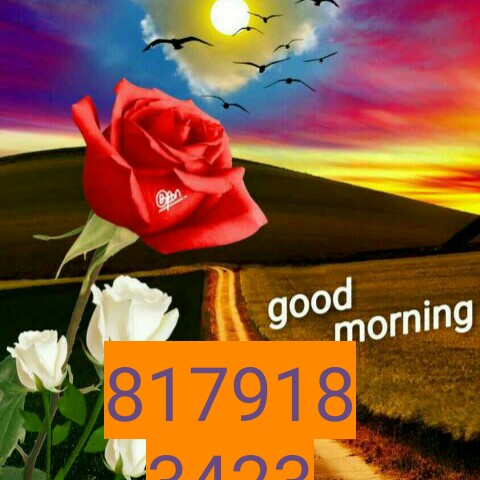 goodmornin - can good morning 9817918 12112 - ShareChat