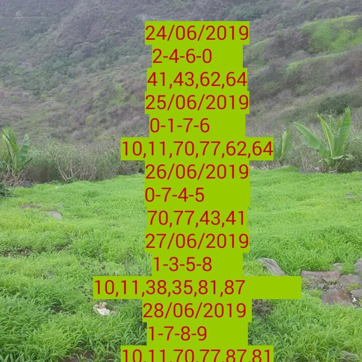 💵सट्टा मटका - 24 / 06 / 2019 2 - 4 - 6 - 0 41 , 43 , 62 , 64 25 / 06 / 2019 0 - 1 - 7 - 6 10 , 11 , 70 , 77 , 62 , 64 - 26 / 06 / 2019 0 - 7 - 4 - 5 70 , 7743 . 41 . 27 / 06 / 2019 1 - 3 - 5 - 8   10 , 11 , 38 , 35 , 81 , 87 28 / 06 / 2019 1 - 7 - 8 - 9 10 . 11 . 70 . 77 . 87 . 81 - ShareChat