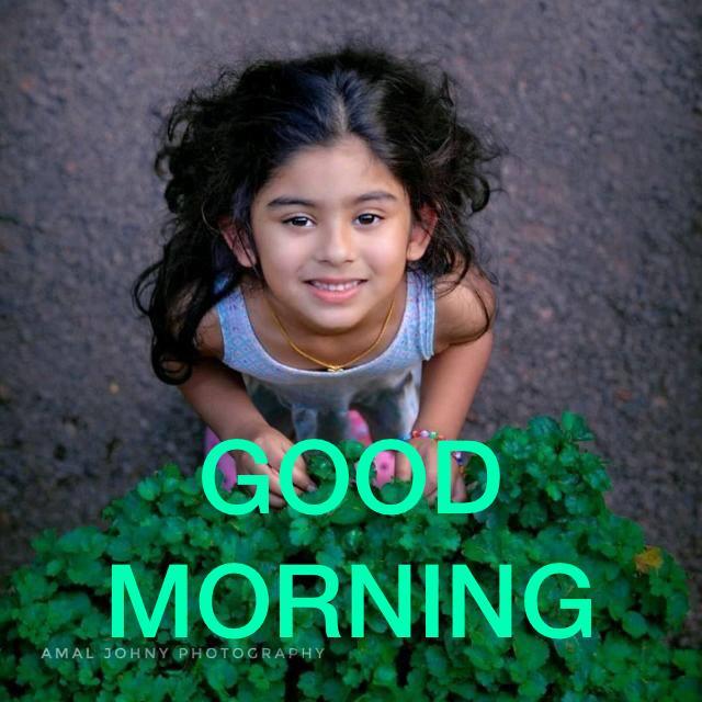 🌞 ഗുഡ് മോണിംഗ് - GOOD MORNING AMAL JOHNY PHOTOGRAPHY - ShareChat