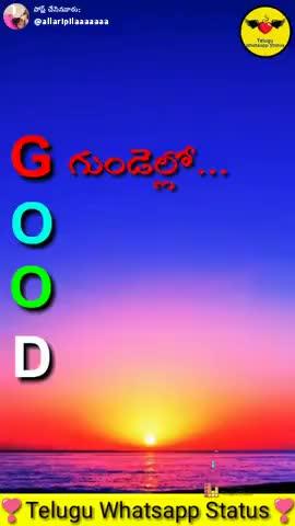 GOOD MORNING - పోస్ చేసినవారు : allaripilaaaaaaa M 330 - sd Telugu Whatsapp Status ShareChat vజాలి లేని రాక్షసి ' pv aanpinnal ప్రేమించండి నటించకండిపొఇన్ బాక్స్ లో మెసేజ్ కి Follow - ShareChat