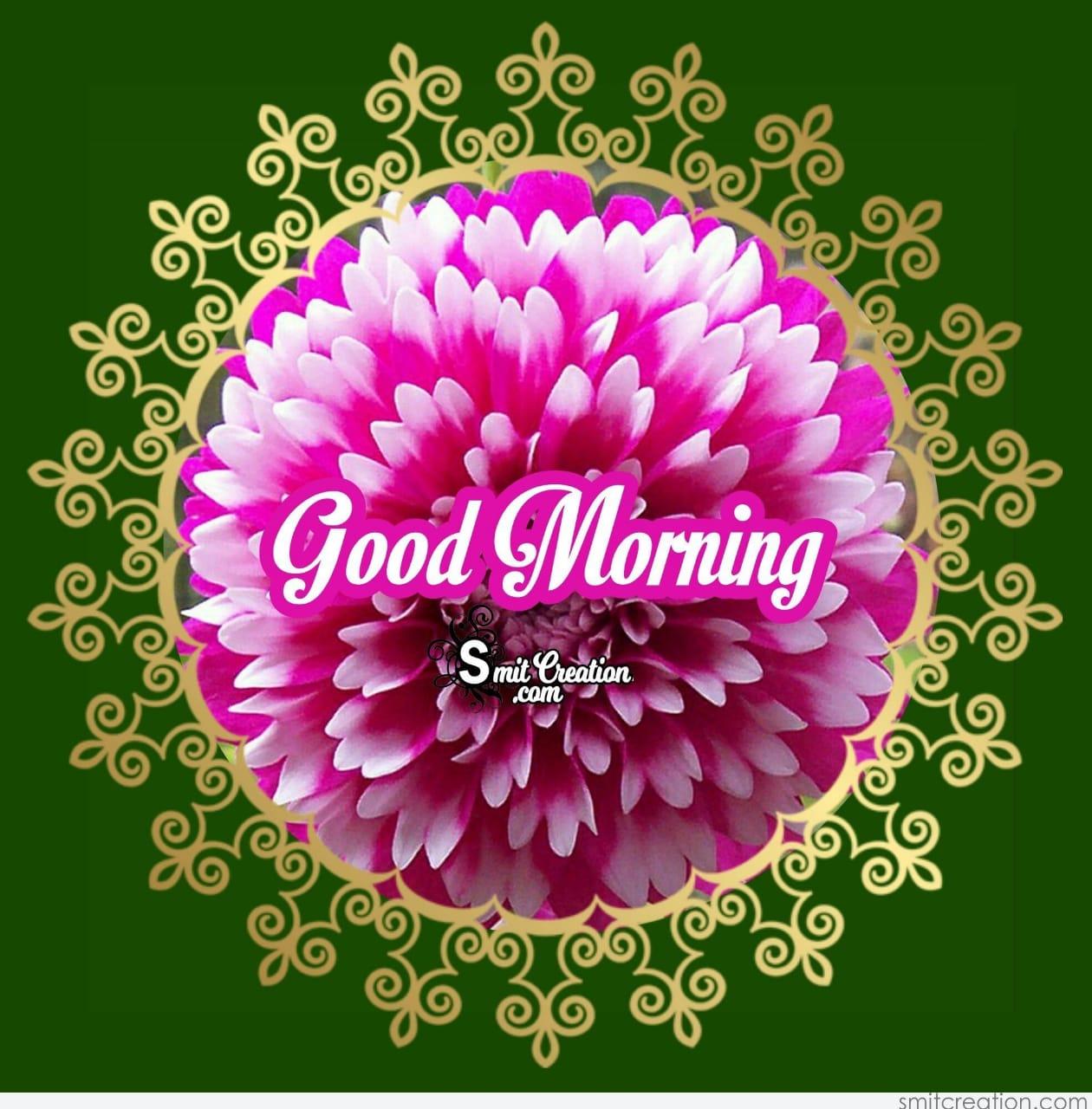 Good Morning Image Rockey Sharechat Funny Romantic