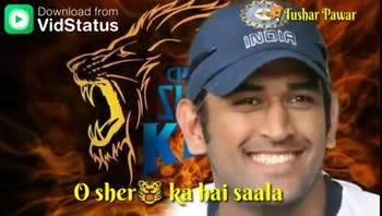 💛 CSK : ચેન્નાઈ સુપર કિંગ્સ - Download from Tushar Pawar xhelai Jaadu Kar Daala Download from Tushar Pawar Bade Dildar Vaar Maar . Maar - ShareChat