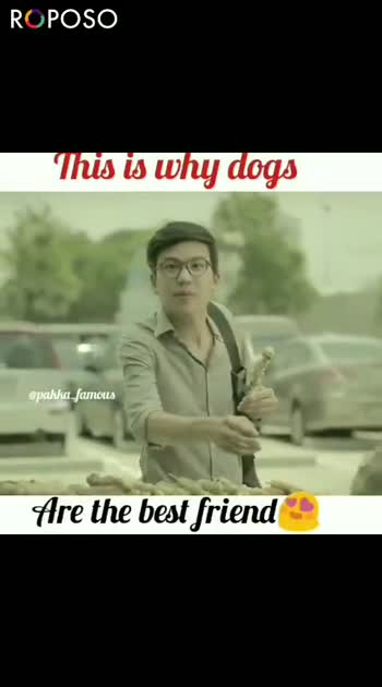 ram.. - This is why dogs @ pakka _ famous Are the best friend ROPOSO RC POSO Install now : - ShareChat