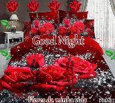 good night 💕💐 - ShareChat