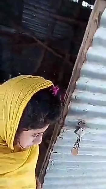 কাল হো না হো -এর ষোলো বছর 📽🎥 - ShareChat