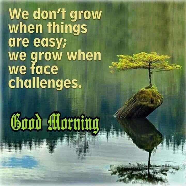 📰 13 ઓગસ્ટનાં સમાચાર - We don ' t grow when things are easy ; we grow when we face challenges . Good Morning - ShareChat