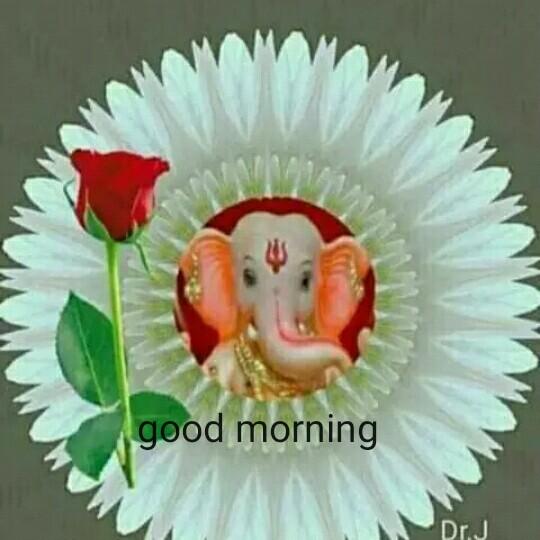 तस्वीर बोलती है - good morning - ShareChat