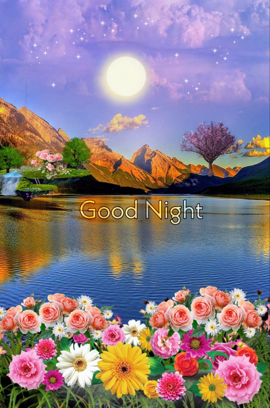 good night - - Good Night - ShareChat