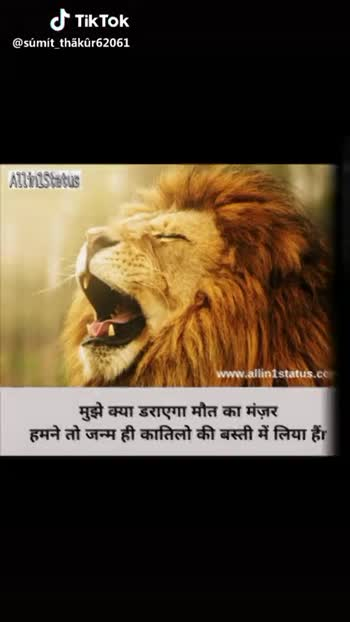 📊 વર્લ્ડ કપ લાઈવ સ્કોર - @ sumit _ thakur62061 Instal @ royal . hindi . status पहले तसल्ली करो वफादार कौन है । वक्त तो बता ही देगा , dil _ ka _ dard ARYA करने को तो मैं भी बहुत कुछ कर सकता हूँ लेकिन अपनों को हराकर जितने की आतत नही है . . @ sumit _ thakur62061 - ShareChat