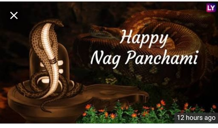 कांवड़ यात्रा - LY Happy Nag Panchami 12 hours ago - ShareChat