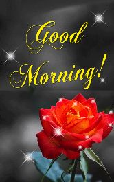Good Morning - Good Morning ! - ShareChat