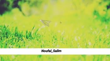 പാട്ടിന്റെ വരികൾ - LIKE WE USED TO DO Noufal _ Salim B ALIKE LEKSER TO DO Noufal _ Salim - ShareChat