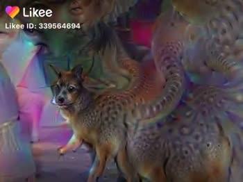 👗 दीपावली लुक वीडियो - ShareChat