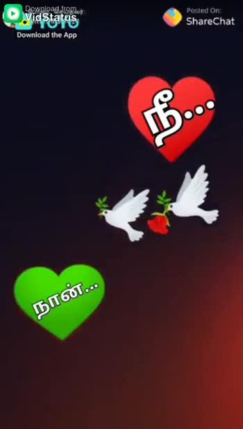உன் மீது கொண்ட காதல் - ShareChat