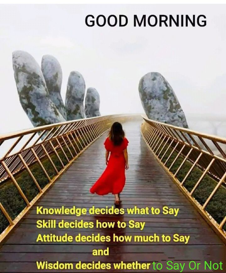 🌅 Good Morning - GOOD MORNING Knowledge decides what to Say Skill decides how to Say Attitude decides how much to Say and Wisdom decides whether to Say Or Not - ShareChat