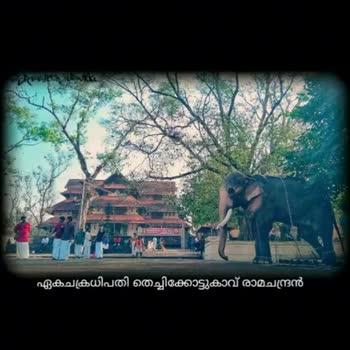 🐘 ആനപ്രേമി - ShareChat