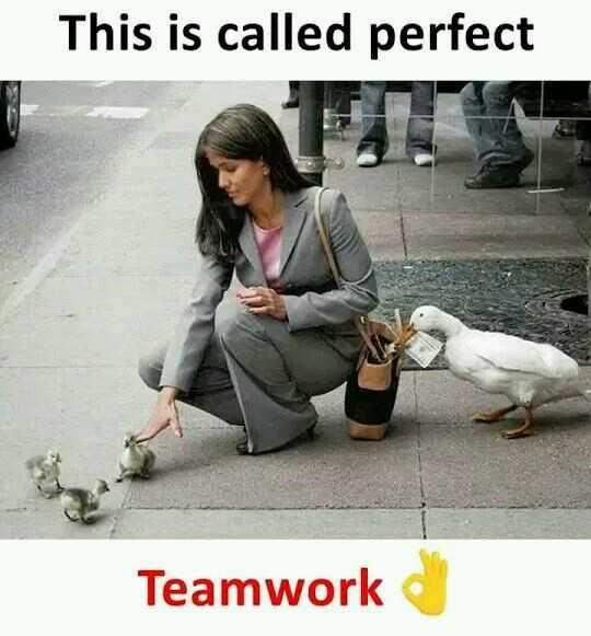 18+ - This is called perfect Teamwork - ShareChat
