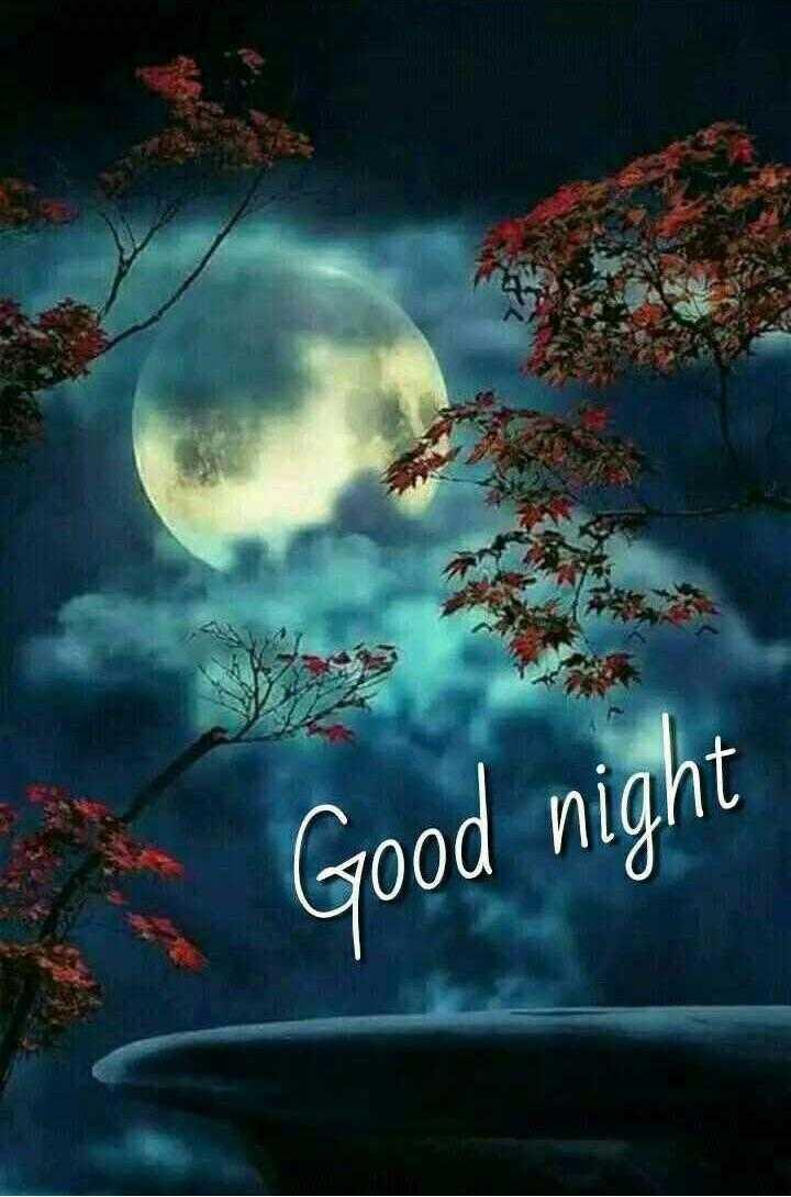 👙 18+ - A Good night - ShareChat
