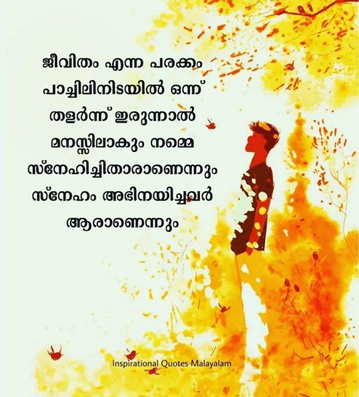 😔സങ്കടം - ജീവിതം എന്ന പരക്കം - പാച്ചിലിനിടയിൽ ഒന്ന് : തളർന്ന് ഇരുന്നാൽ മനസ്സിലാകും നമ്മ സ്നേഹിച്ചിതാരാണെന്നും സ്നേഹം അഭിനയിച്ചവർ - ആരാണെന്നും Inspirational Quotes Malayalam - ShareChat