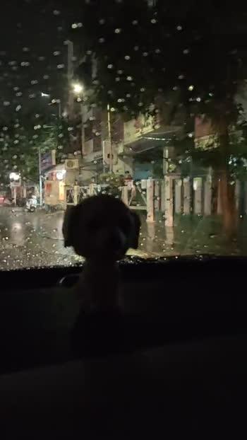 rainyday - ShareChat