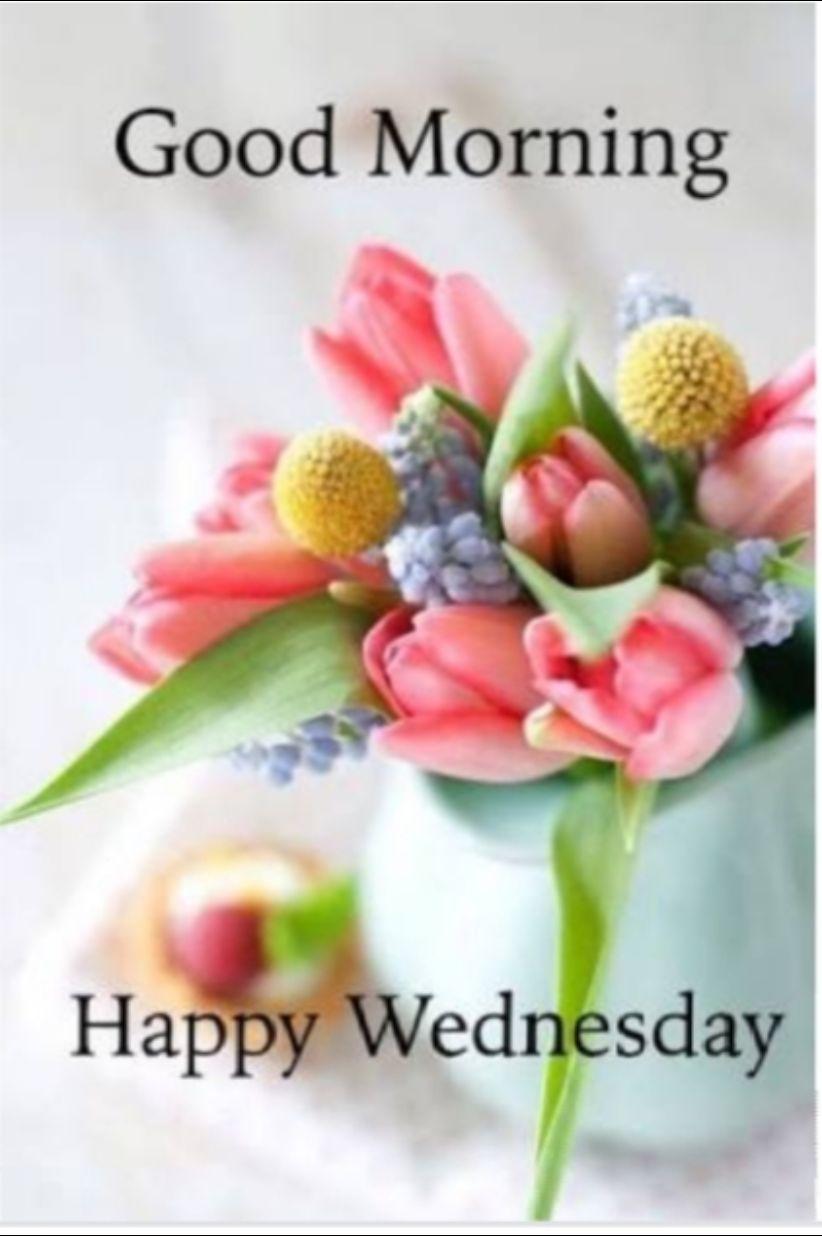 🌞সুপ্রভাত - Good Morning Happy Wednesday - ShareChat