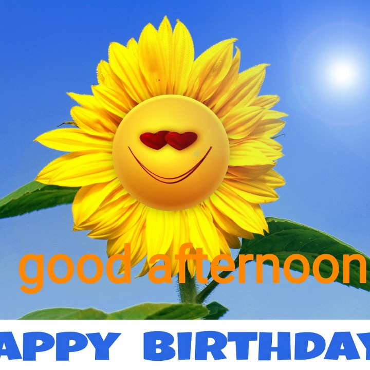 good afternoon friends - goodsa noon APPY BIRTHDAY - ShareChat