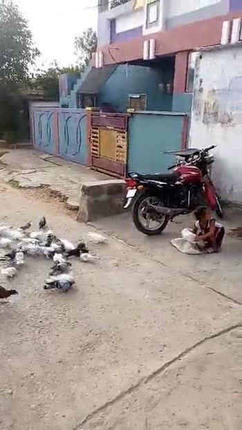 🏃🏼స్కిప్పింగ్ ఛాలెంజ్ - ShareChat