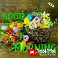 g - NNR SAMOSA DOMOWA NNR Hi - Good morning MUDA - ShareChat