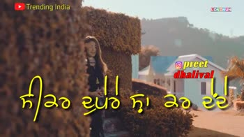 status - Trending India LOKDHUN @ preet dhalival Trending India @ preet dhalival ਤੇਰੀ ਅੱਖ ਨਈ ਲੱਗ ਦੀ ਰਾਤਾ ਨੂੰ - ShareChat