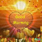 good morning gif - Good Morning - VoYo Download the app - ShareChat