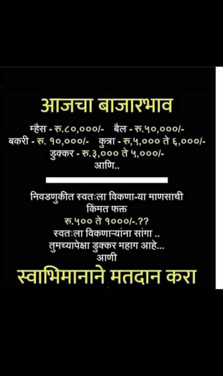 2019 election - आजचा बाजारभाव म्हैस - रु . ८० , ००० / - बैल - रु . ५० , ००० / बकरी - रु . १० , ००० / - कुत्रा - रु , ५ , ००० ते ६ , ००० / डुक्कर - रु . ३ , ००० ते ५ , ००० / आणि . . निवडणुकीत स्वतःला विकणा - या माणसाची किंमत फक्त रु . ५०० ते १००० / - . ? ? स्वतःला विकणाऱ्यांना सांगा . . तुमच्यापेक्षा डुक्कर महाग आहे . . . आणी स्वाभिमानाने मतदान करा - ShareChat