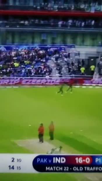 cricket 🏏 - ShareChat
