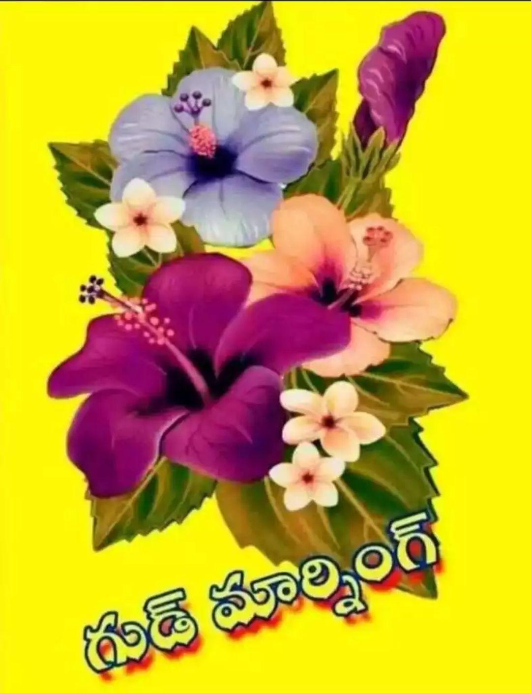 🌅శుభోదయం - గుడ్ మార్నింగ్ - ShareChat