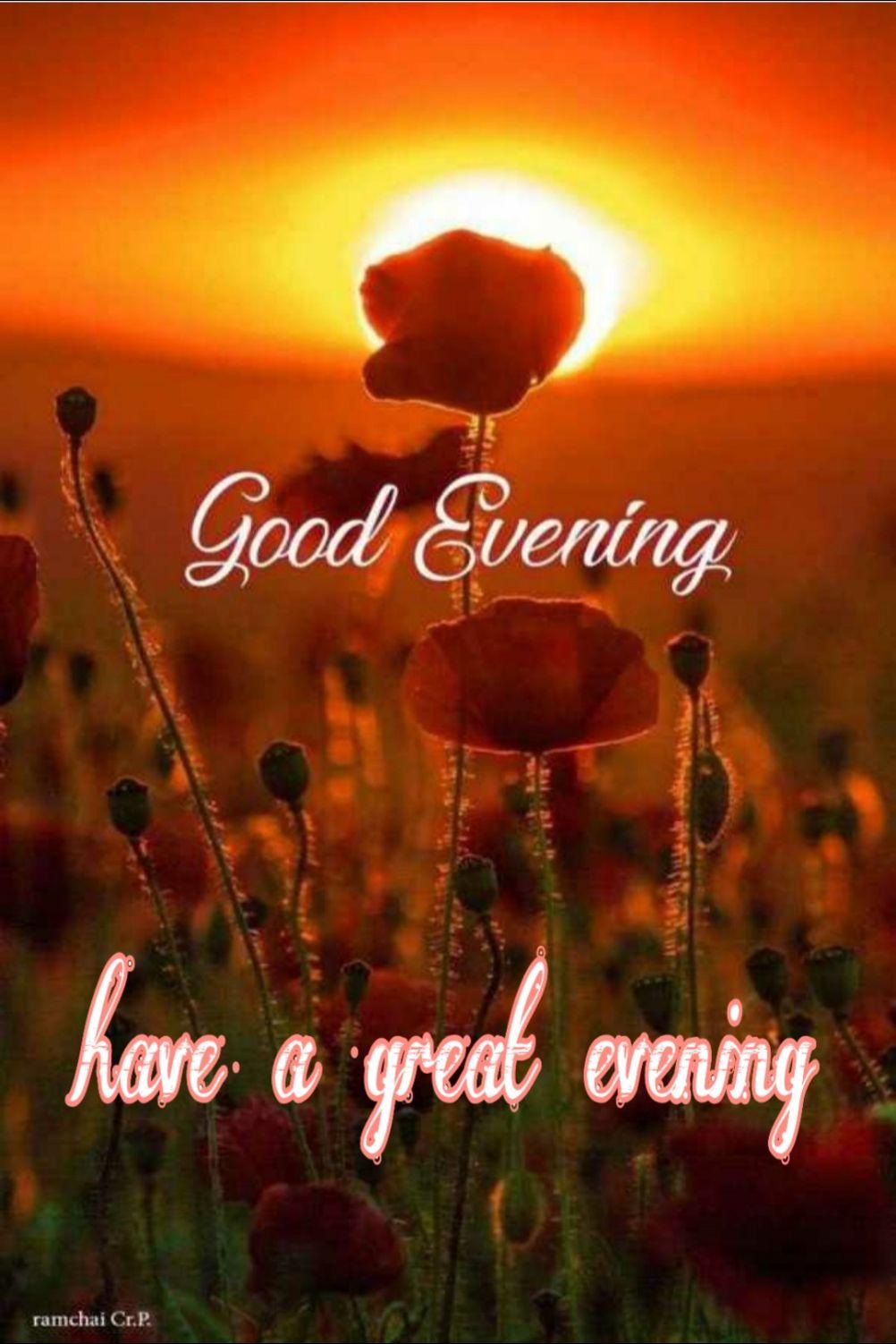🌜 शुभ संध्या🙏 - Good Evening have a great evening ramchai Cr . P . - ShareChat