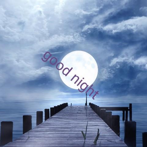 good night 💕💐 - good night - ShareChat