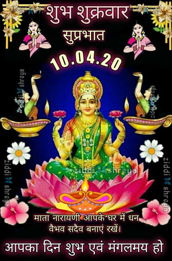 🌷शुभ शुक्रवार - परशुभ शुक्रवार सुप्रभात 10 . 04 . 20 Nadies shreya zidos Shreya iddi shreya ziddi ziddishreya shreya माता नारायणी आपके घर में धन वैभव सदैव बनाएं रखें । आपका दिन शुभ एवं मंगलमय हो - ShareChat