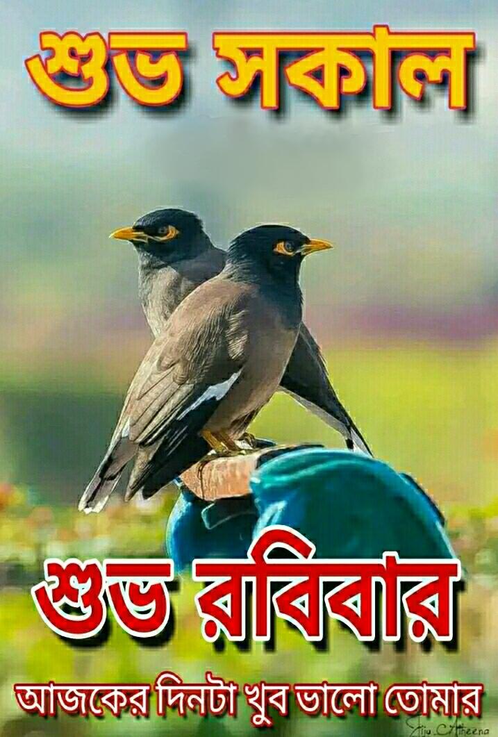 🌞সুপ্রভাত - শুভ সকুল । শুভ রাত্রির আজকের দিনটা খুব ভালাে তােমার u eteena - ShareChat