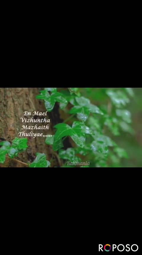 🎂HBD எ.ஆர் ரகுமான் - ROPOSO Ithanai Naalaay Engirunthaay . . . . Rahmania ROPOSO Install now : - ShareChat