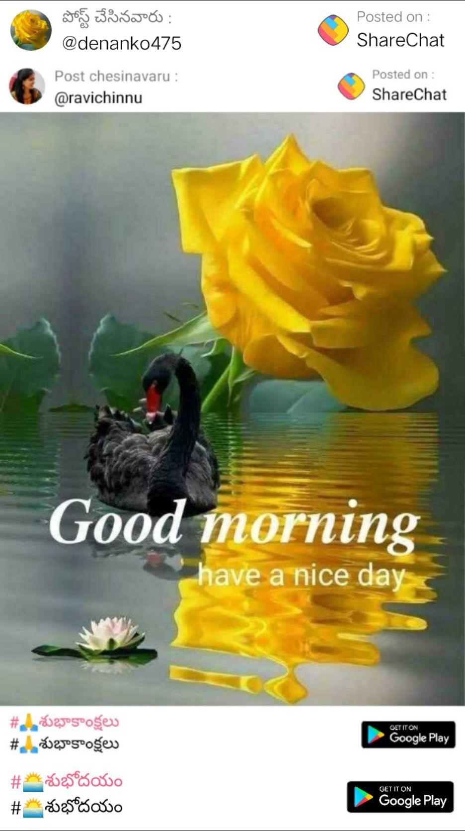 🌅శుభోదయం - పోస్ట్ చేసినవారు : @ denank0475 Posted on : ShareChat Post chesinavaru : @ ravichinnu Posted on : ShareChat Good morning have a nice day # A శుభాకాంక్షలు # 4 శుభాకాంక్షలు GET IT ON Google Play GET IT ON # శుభోదయం # శుభోదయం Google Play - ShareChat